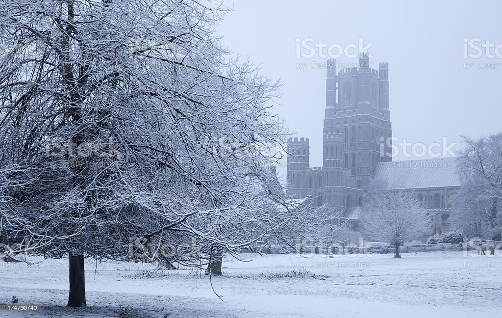 Ely Cathedral in Winter royalty-free stock photo