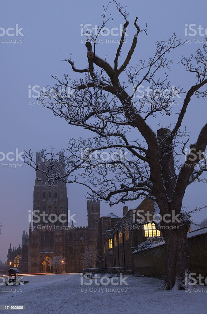 Ely Cathedral royalty-free stock photo