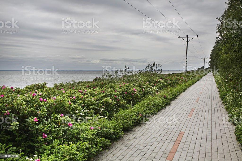 Embankment in Kuznica. Poland stock photo