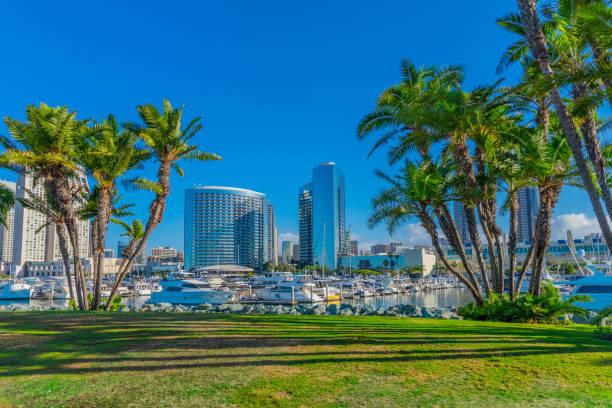 Embarcadero Marina Park mit Wolkenkratzern von San Diego – Foto