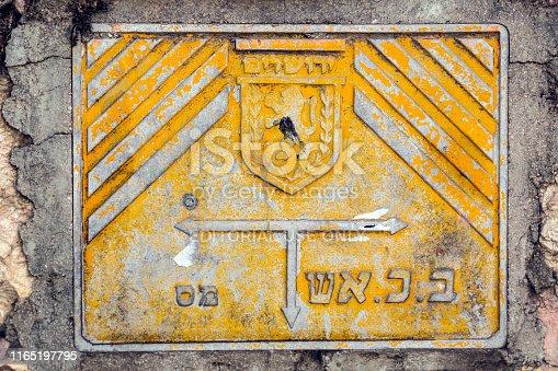 Emblem of Jerusalem city on a metal plate, lion and olive leaves