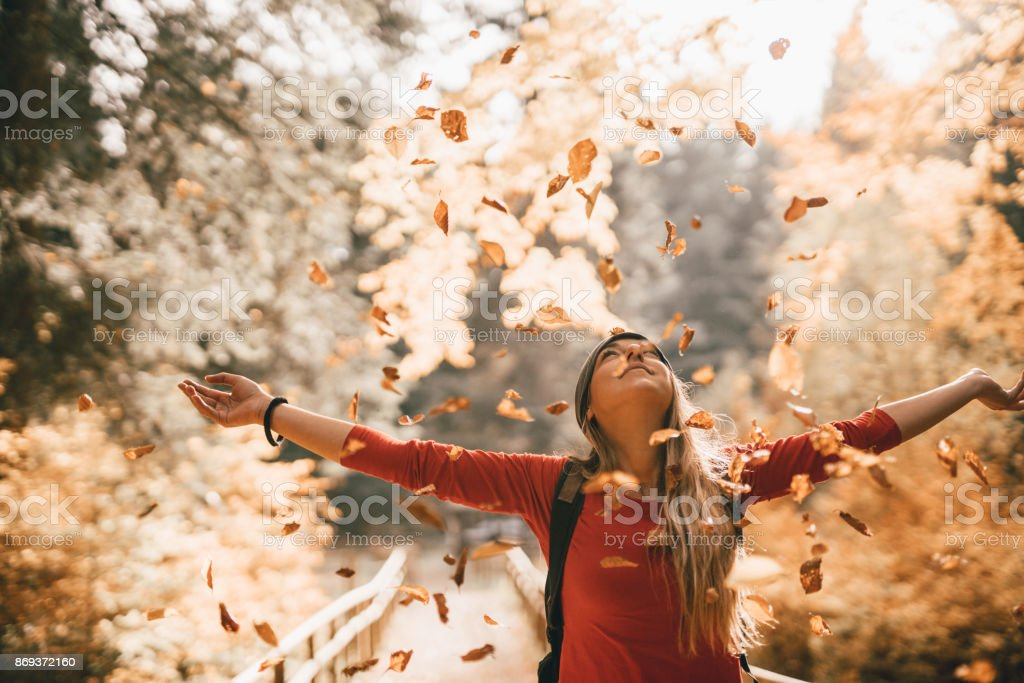 Embracing the golden autumn stock photo