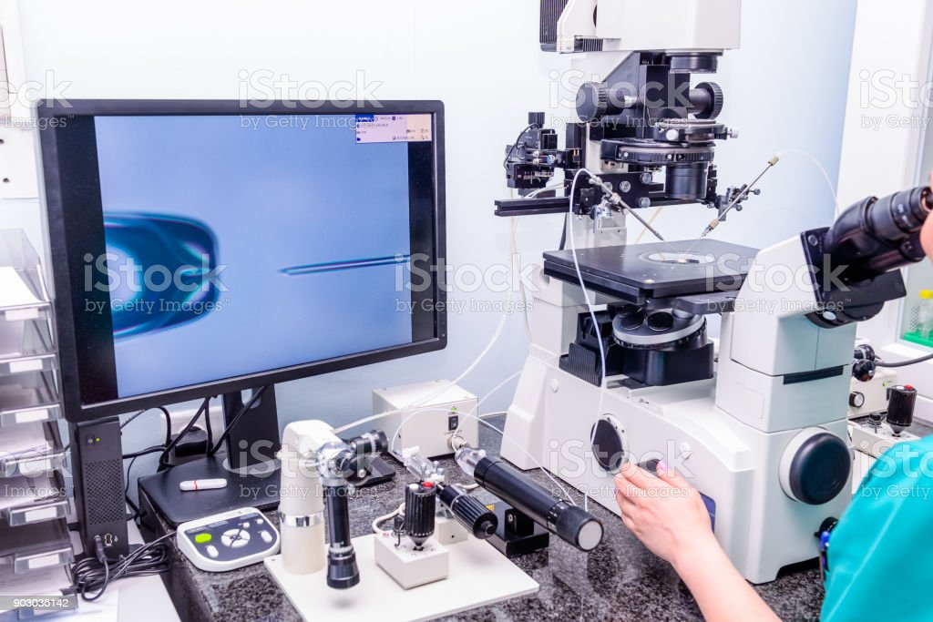 Embryologist adding sperm to egg in laboratory of reproductive clinic. Selective focus stock photo