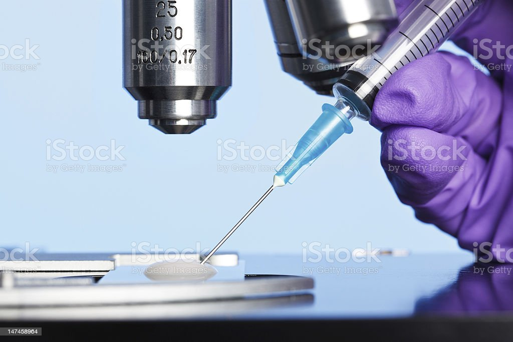 Embryology sample and microscope stock photo