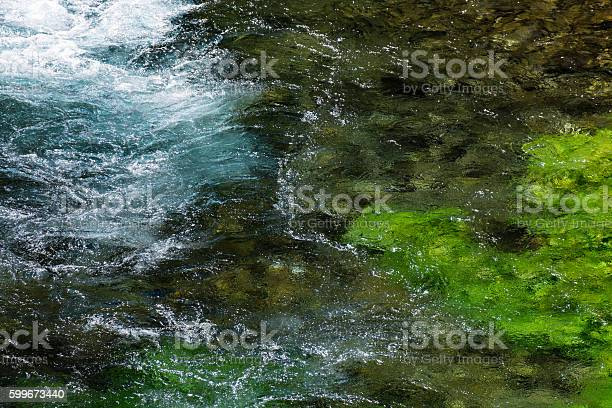 Photo of Emerald green flowing river water with seewead, abstract backgro