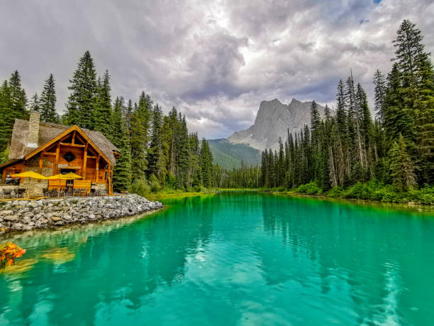 Emerald Lake and Mount Burgess, Yoho National Park, Canada Emerald Lake is located in Yoho National Park, British Columbia, Canada, and it is the largest of 61 lakes and ponds located in this park. Mount Burgess looms over this lake. Stormy skies and rain make for a rather dramatic landscape. emerald lake stock pictures, royalty-free photos & images
