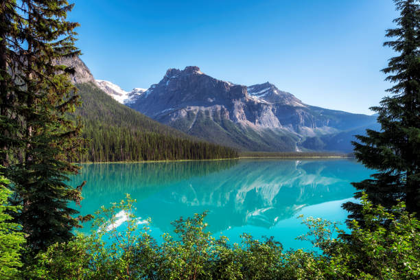 Emerald Lake in Rocky Mountains Beautiful turquoise waters of the Emerald Lake with snow-covered peaks above it in Rocky Mountains, Yoho National Park, Canada. emerald lake stock pictures, royalty-free photos & images