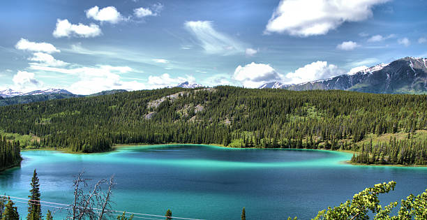 Emerald Lake Beautiful Emerald Lake in Yukon Canada emerald lake stock pictures, royalty-free photos & images