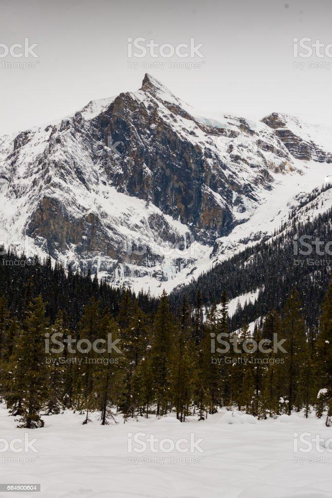 Emerald Lake foto stock royalty-free