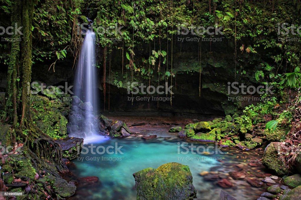 Emerald Pool, Dominica stock photo