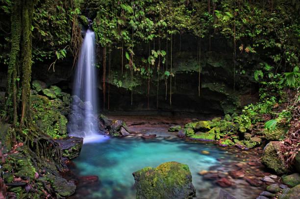 Emerald Pool, Dominica – Foto