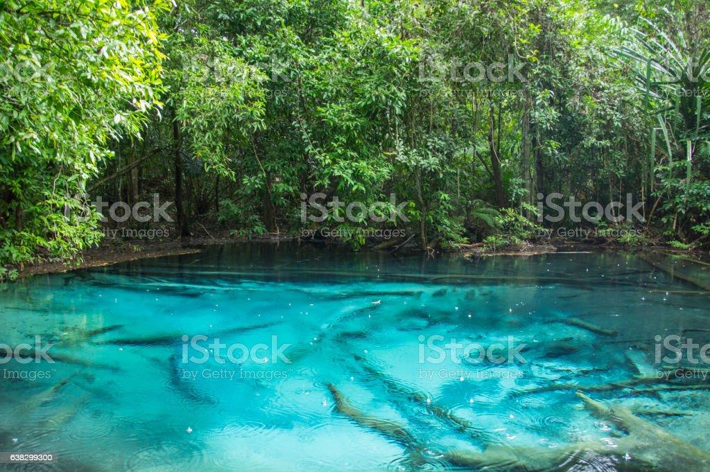 Emerald Pool (Sa Morakot), Krabi Thailand stock photo