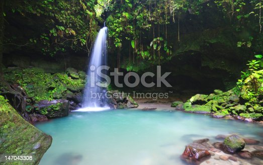 Emerald pool on the island of dominica in the Caribbean deep in the rainforest