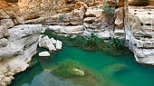 Emerald green waters and white rocks along the desert oasis hike of Wadi Shab in Oman