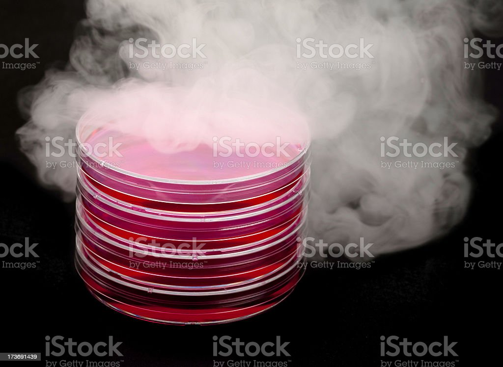 Emergence of stem cells royalty-free stock photo