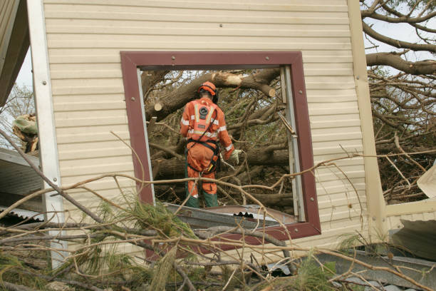 emergency repair emergency worker in safety clothing cuts fallen trees with chainsaw (framed through fallen window) environmental cleanup stock pictures, royalty-free photos & images