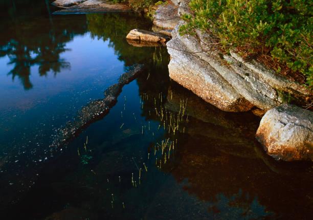Emergent Depths at Lake Awosting stock photo