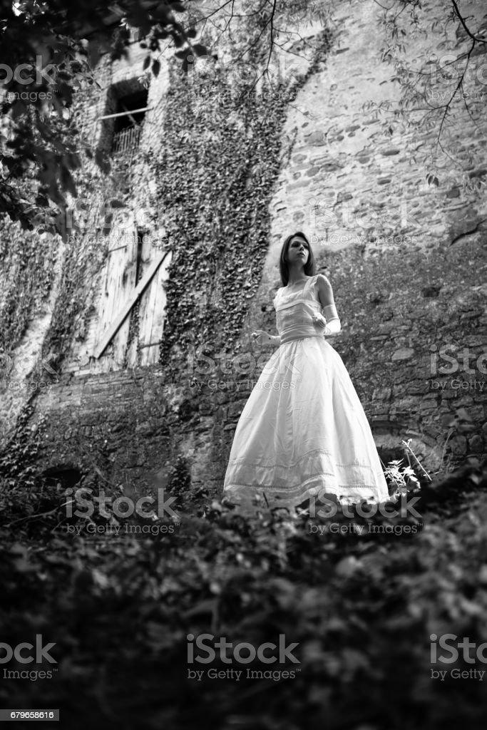 Emma Peonia stock photo