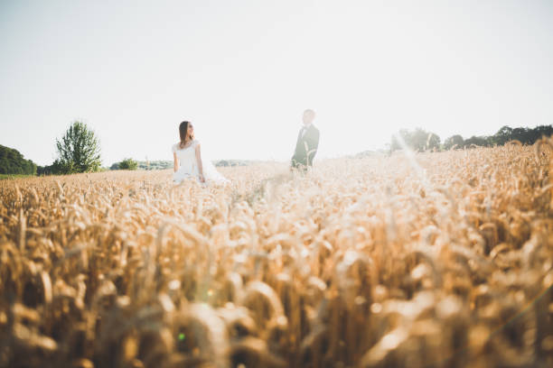 Emotional beautiful bride hugging newlywed groom at a field closeup stock photo