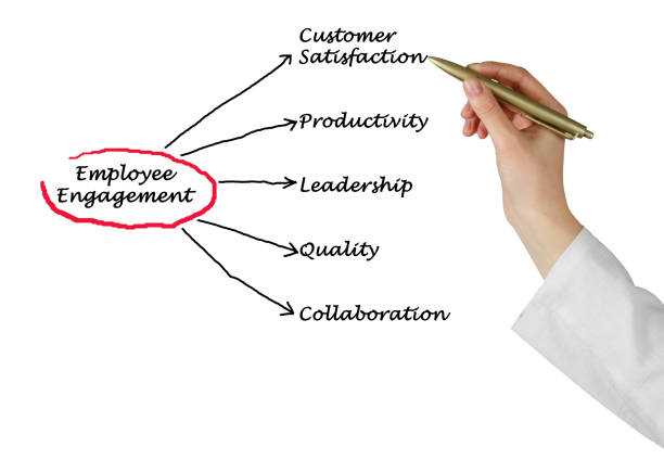 employee engagement - employee engagement stock photos and pictures
