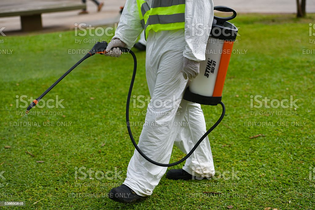 Employee fumigates for Aedes aegypti mosquitos stock photo