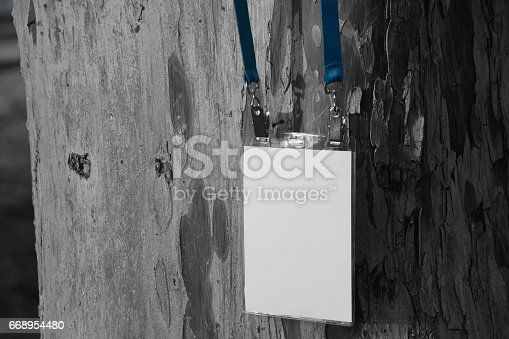 668954740istockphoto Employee tag hanging on a tree 668954480