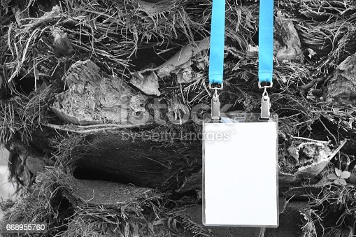 668954740istockphoto Employee tag hanging on a tree 668955760