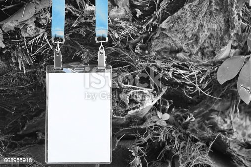 668954740istockphoto Employee tag hanging on a tree 668955918