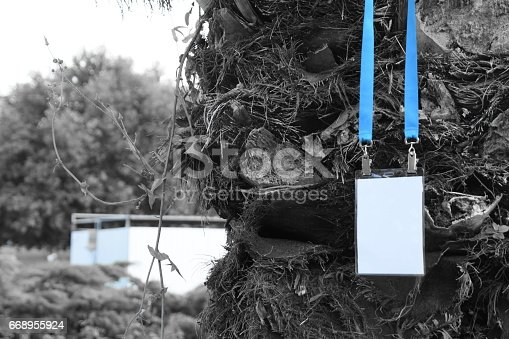 668954740istockphoto Employee tag hanging on a tree 668955924