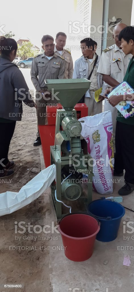 Employees demonstrate rice coloring with a small rice mill. stock photo
