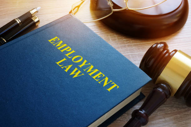 Employment law concept. Book and gavel on a desk. Employment law concept. Book and gavel on a desk. employment and labor stock pictures, royalty-free photos & images