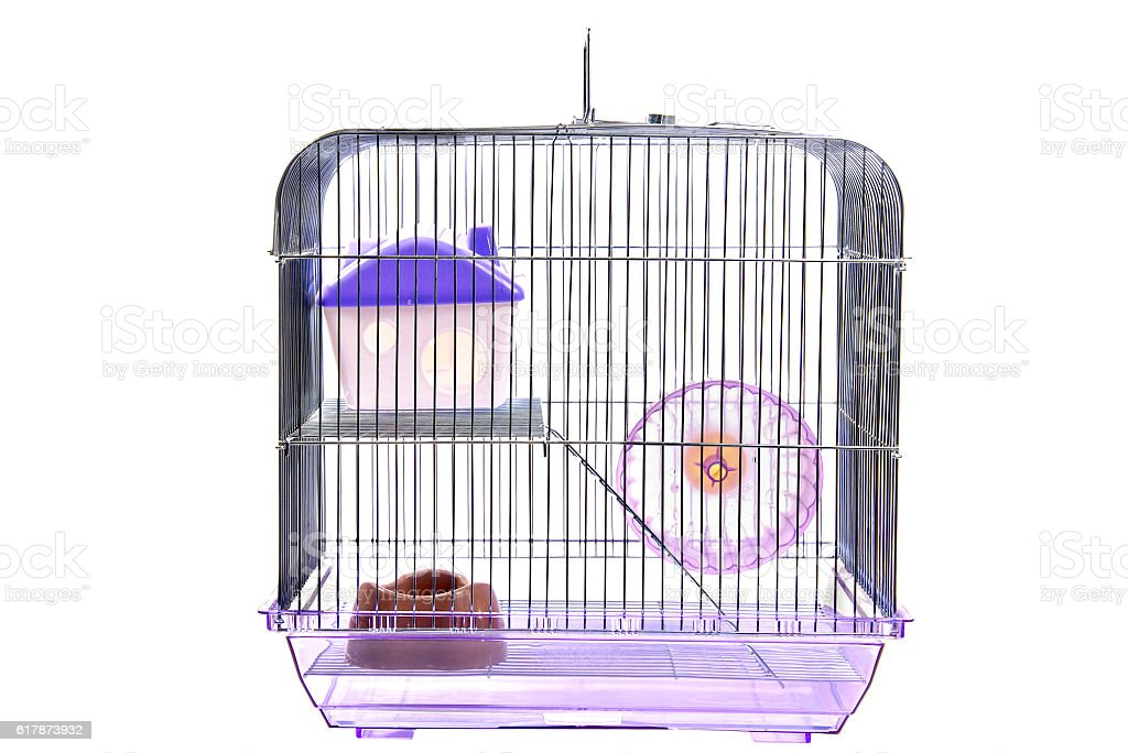 Empty animal cage isolated on white stock photo