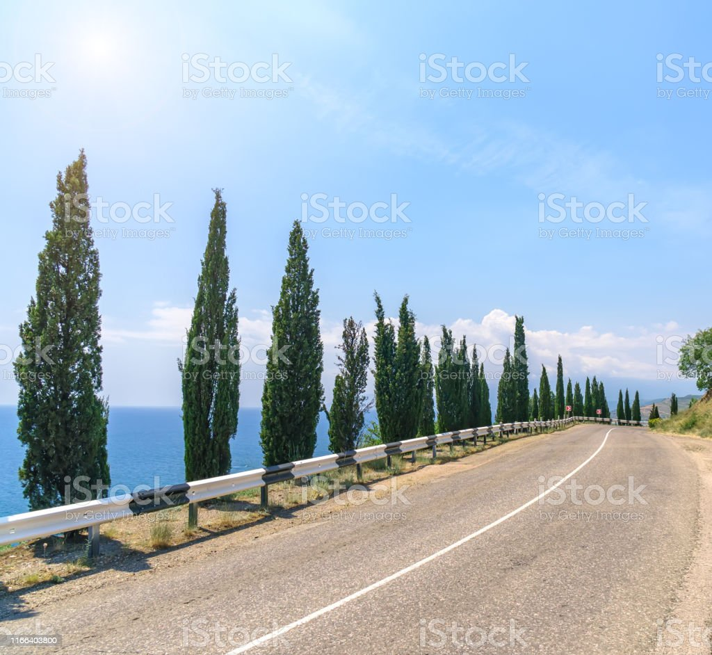 Empty asphalt road with cloudy sky and sunlight.
