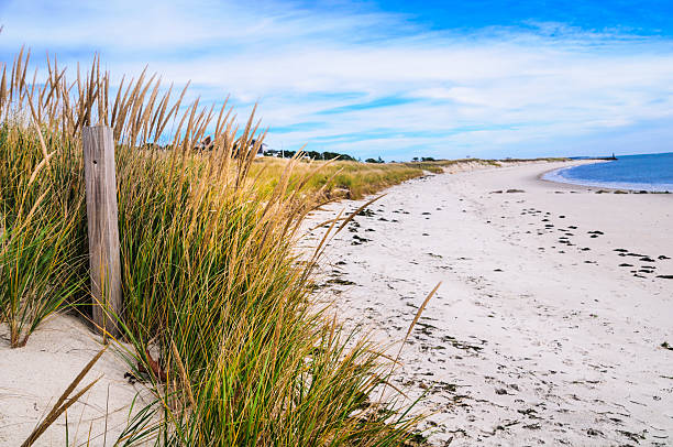 Empty Autumn Beach Beach grass takes on a autumn hue late in the season on a Cape Cod beach. cape cod stock pictures, royalty-free photos & images