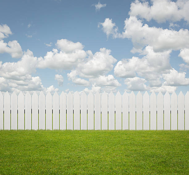 empty back yard background - palisade boundary stock photos and pictures