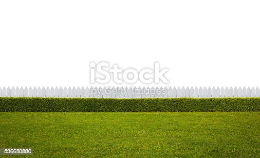 Empty backyard isolated on white background with copy space
