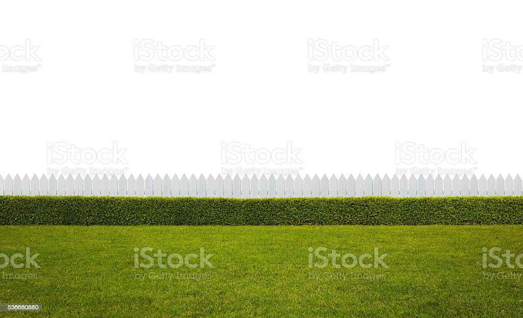 Empty backyard stock photo
