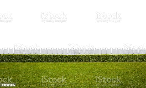 Photo of Empty backyard