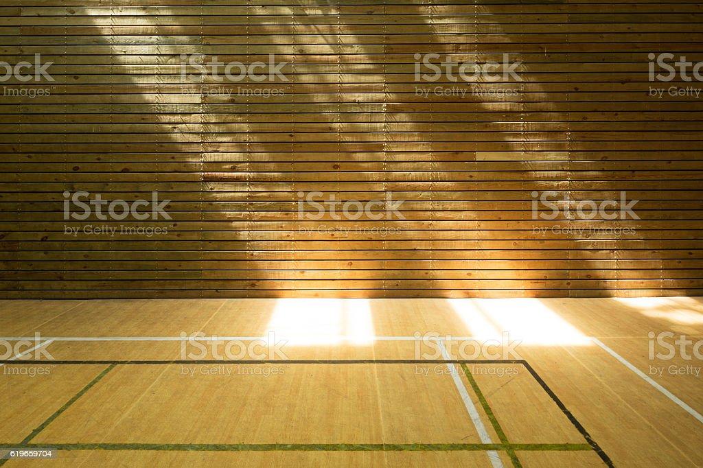empty badminton court stock photo