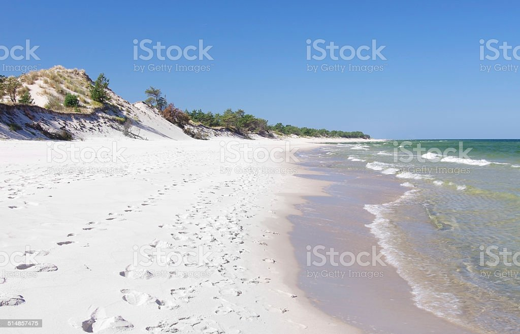 empty beach and dunes stock photo