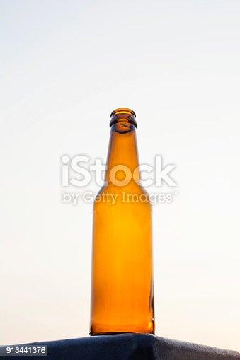 1073474208istockphoto Empty beer bottle isolated 913441376