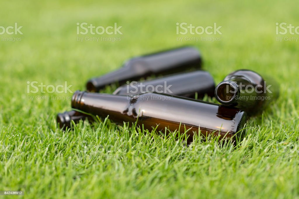 Empty beer bottles in a grass field stock photo