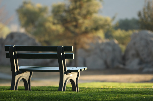 An empty bench at the park with green grass, trees and rocks in the blurred background as evening falls.