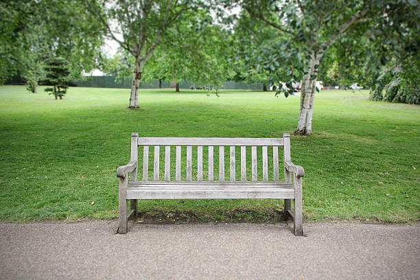 empty bench in park - zitbank stockfoto's en -beelden