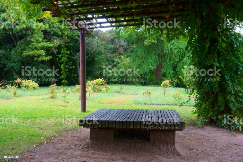 Empty Bench In The Shady Garden Japanese Gardens Stock Photo