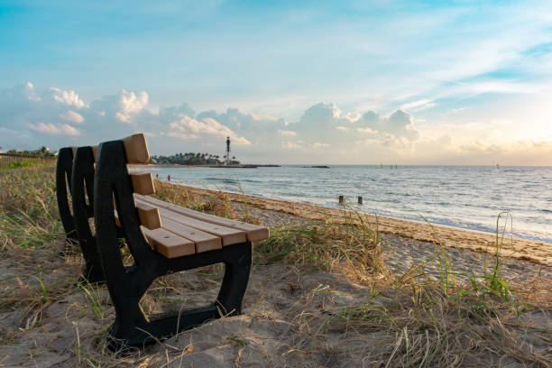 empty bench on a grassy sand dune near the lighthouse stock photo
