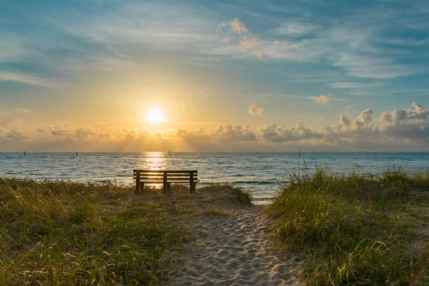 empty bench on grassy sand dunes by the ocean just after sunrise stock photo