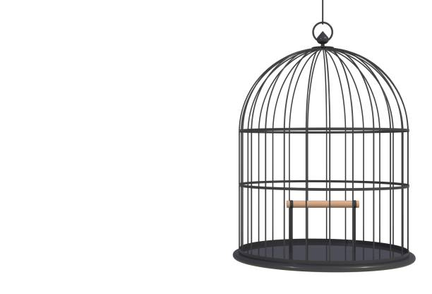 Empty bird black cage Isolated on white background, 3D rendering stock photo
