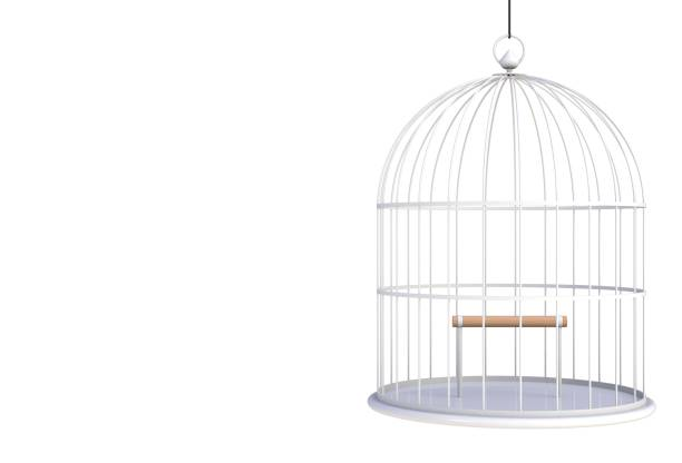 Empty bird white cage Isolated on white background, 3D rendering stock photo