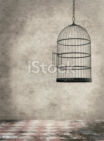 Empty birdcage hanging in an old dirty room